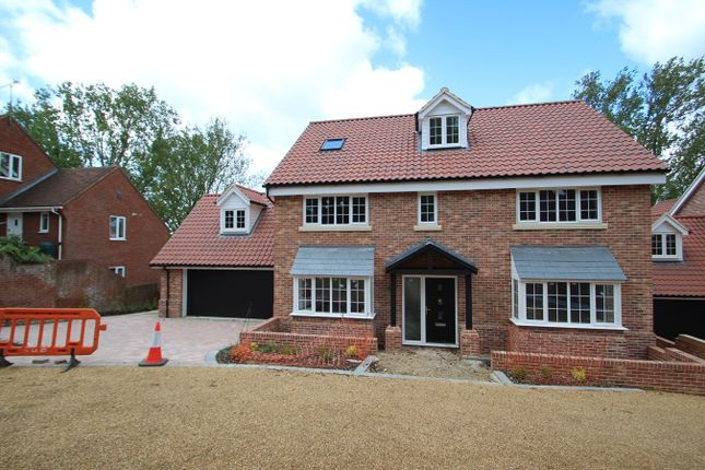 Thumbnail Detached house for sale in Hadleigh Road, Ipswich, Ipswich