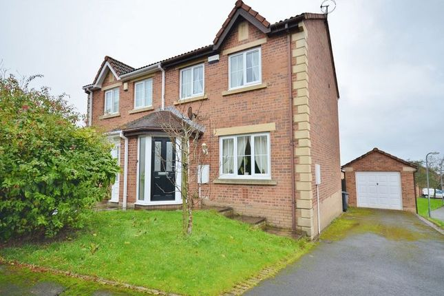Thumbnail Semi-detached house to rent in Holly Bank, Whitehaven