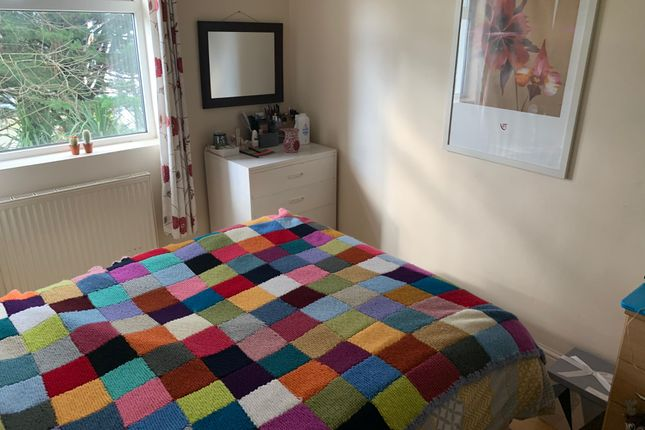 Thumbnail Shared accommodation to rent in Clifton Place, Plymouth