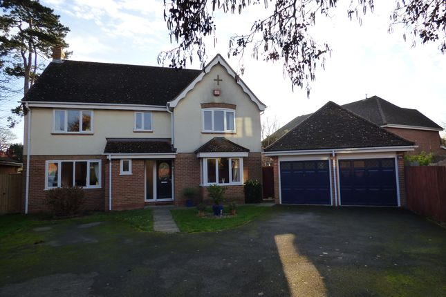 4 bed detached house for sale in Willow Lane, Milton