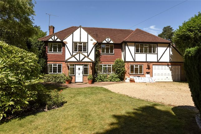Thumbnail Property to rent in Springfield Road, Camberley, Surrey
