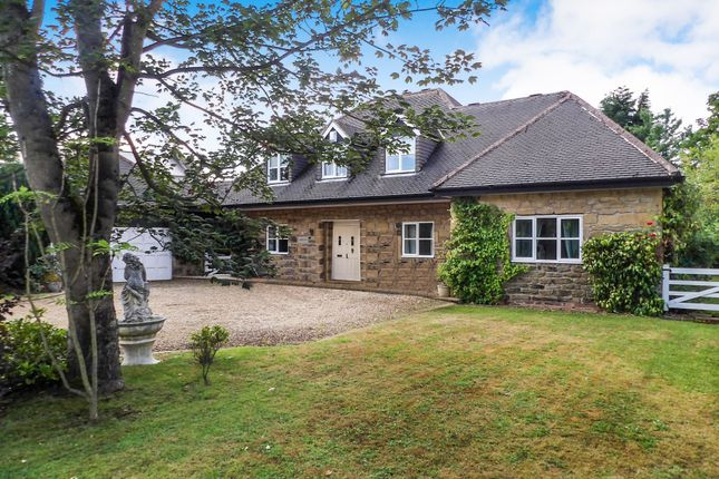 Thumbnail Detached house to rent in Seaton Delaval, Whitley Bay
