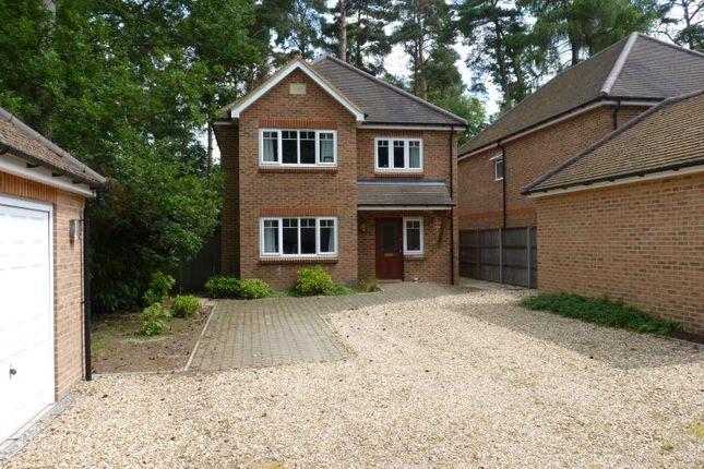 Thumbnail Detached house to rent in Furze Vale Road, Headley Down, Bordon