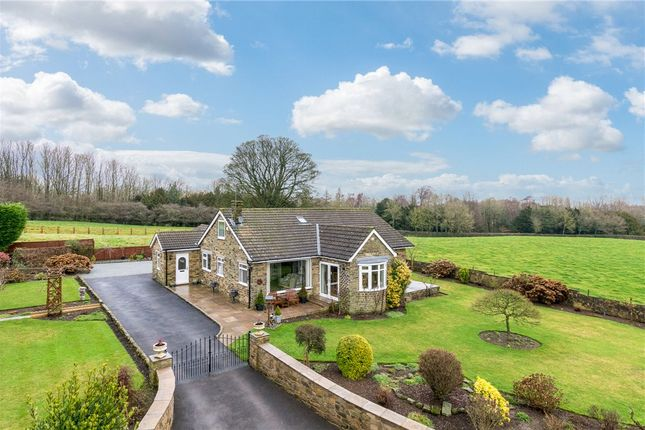 Thumbnail Detached bungalow for sale in Beech Lea, Ripon Road, Kirkby Malzeard, Ripon