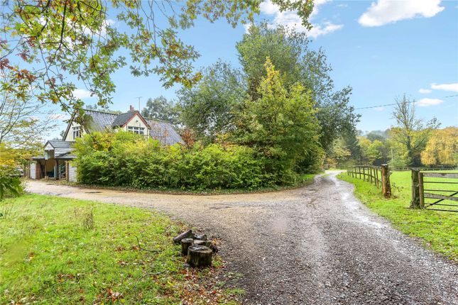 Thumbnail Detached house for sale in St. Helena Lane, Streat, Hassocks, East Sussex