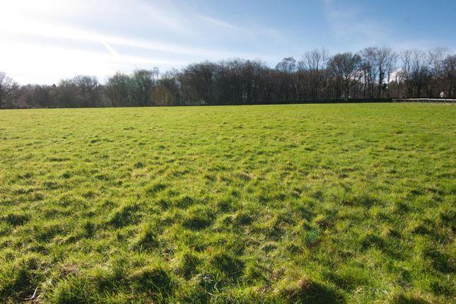 Thumbnail Land for sale in Land Nr Ausewell Cross, Ashburton, Devon