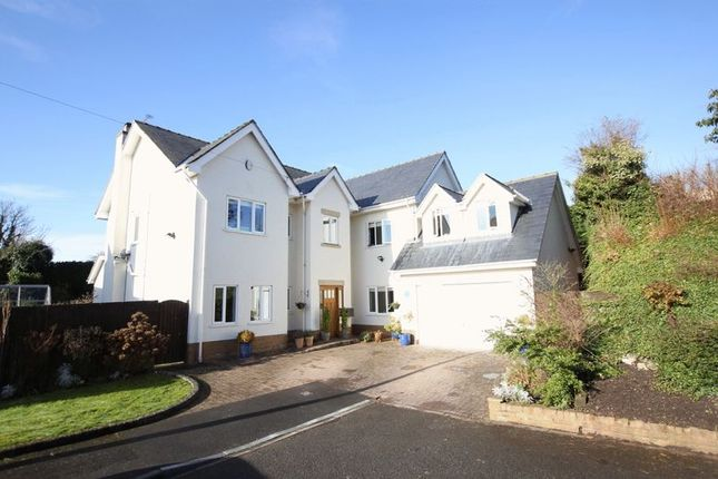 Thumbnail Detached house for sale in Riverbank Close, Lower Heswall, Wirral