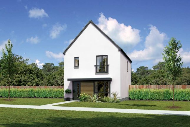 "Thumbnail Detached house for sale in ""Castlevale"" at Whitehills Gardens, Cove, Aberdeen"