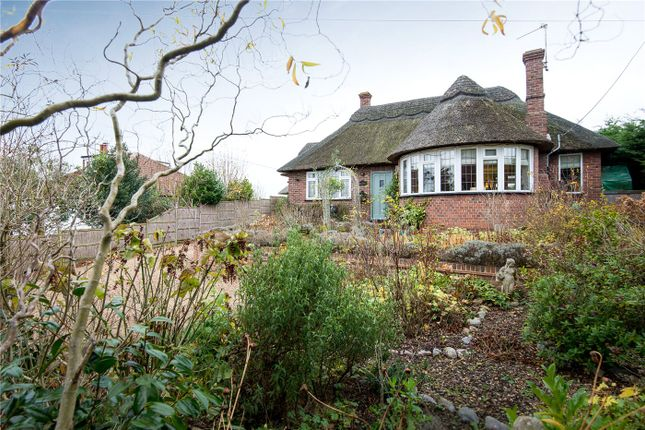 Thumbnail Detached bungalow for sale in Brundall Road, Blofield, Norwich, Norfolk