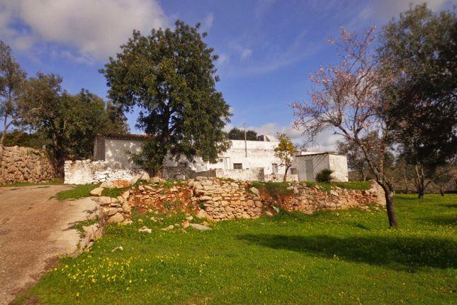 Land for sale in Loulé, Loulé, Portugal