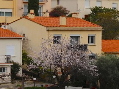Property For Sale In Port Vendres France