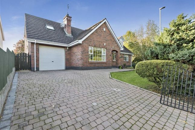 Thumbnail Detached house for sale in Old Grand Jury Road, Saintfield, Down