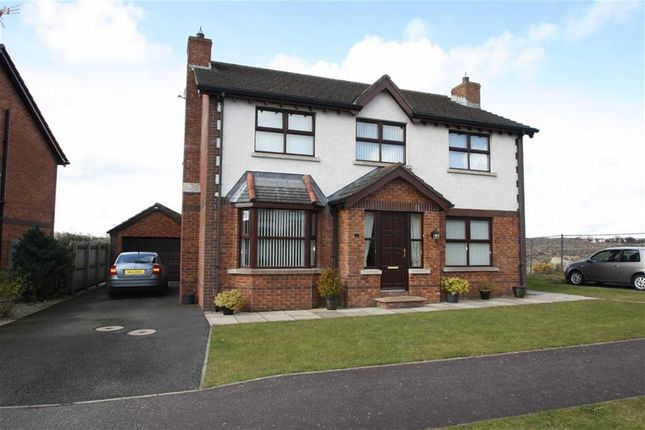 Thumbnail Detached house for sale in Edengrove Park West, Ballynahinch, Down