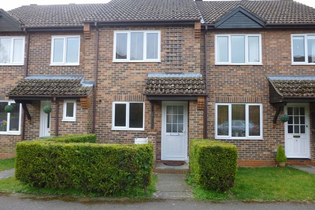 2 bed terraced house to rent in Orchard Close, Alresford, Hampshire SO24
