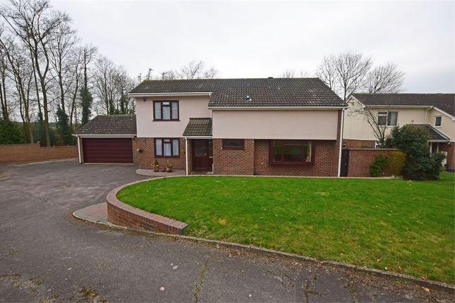 Thumbnail Detached house for sale in Landor Court, Hempstead, Kent