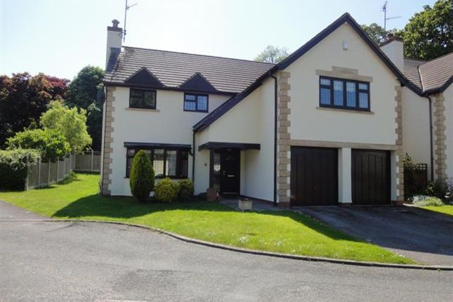 Thumbnail Detached house for sale in Llys Y Dderwen, Betws Yn Rhos, Abergele