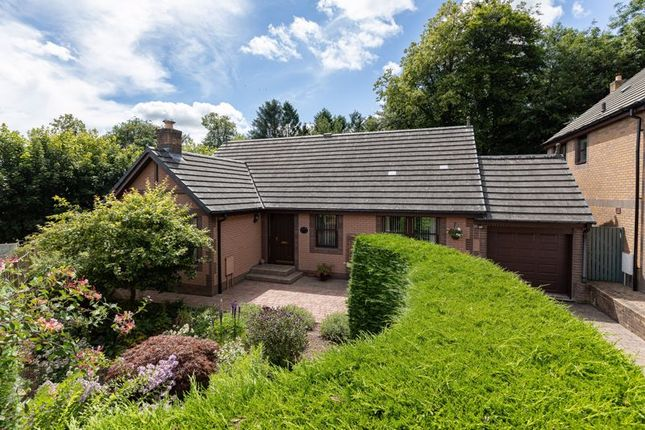 Thumbnail Bungalow for sale in Lainauria, 14 Montgomerie Terrace, Gattonside, Melrose