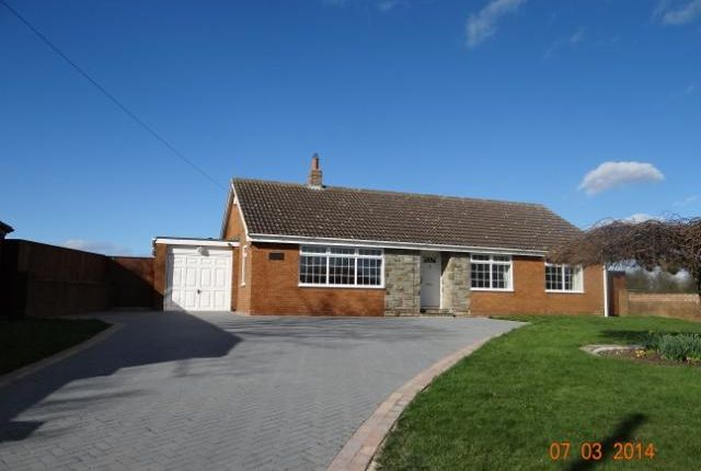 Thumbnail Bungalow to rent in Hornby Road, Appleton Wiske, Northallerton, North Yorks.
