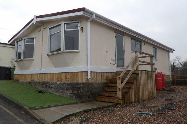 Thumbnail Bungalow to rent in Poplar Drive, Sunningdale Park, Tupton