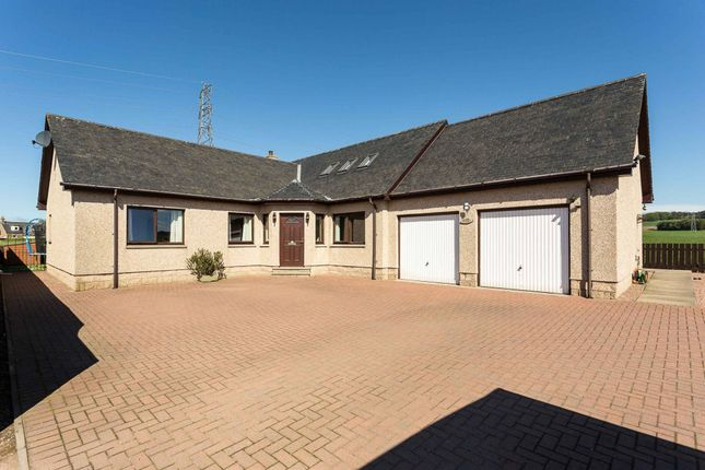 20A Holding, Tealing, Dundee, Angus DD4