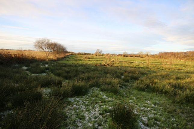 Thumbnail Land for sale in Land At Newton Arlosh Lot 4, Wigton