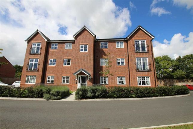 Thumbnail Flat to rent in Aspen House, Penyffordd, Flintshire