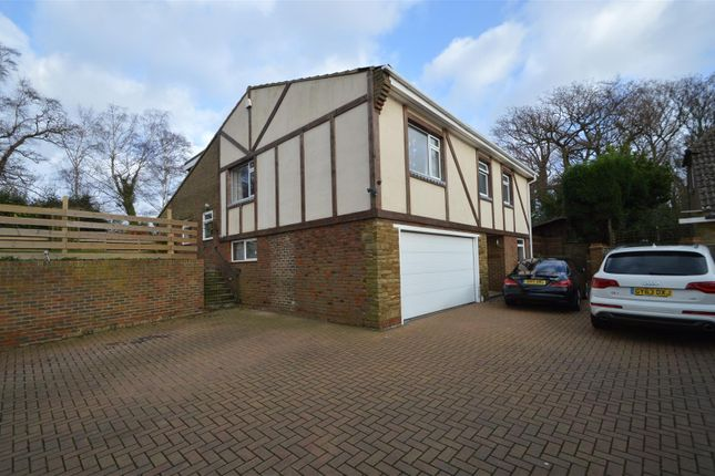 Thumbnail Detached house for sale in St. Marys Lane, Bexhill-On-Sea