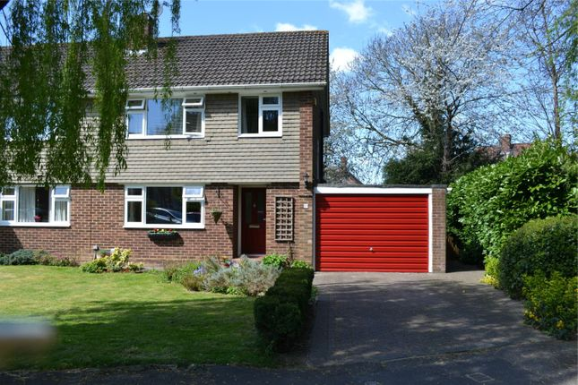3 bed semi-detached house for sale in Springfield Park, Twyford, Berkshire