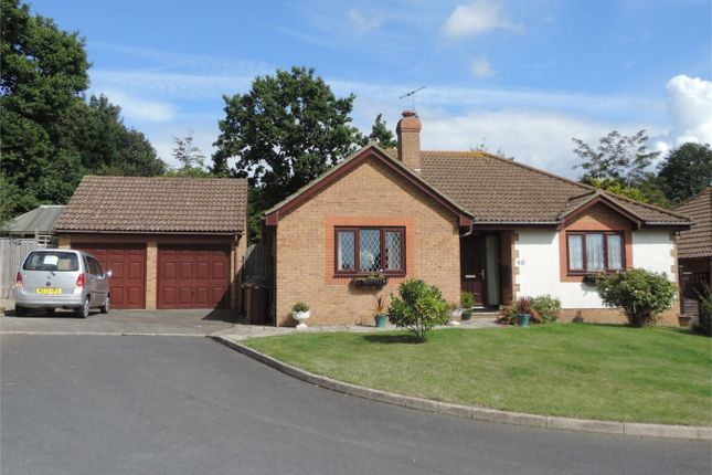 Thumbnail Detached bungalow for sale in Fairfield Chase, Bexhill On Sea, East Sussex