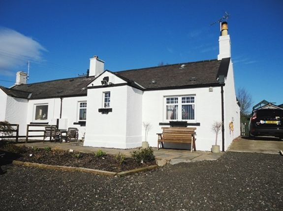Thumbnail Semi-detached house to rent in 2 Courthill Road Cottages Lunan, Inverkeilor, Arbroath