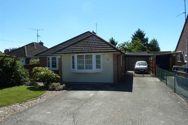 Thumbnail Detached bungalow to rent in Green Lane, Sonning Common, Sonning Common Reading