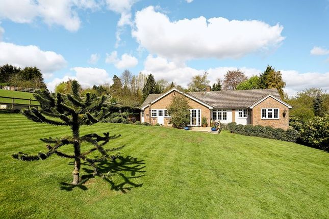 Thumbnail Bungalow for sale in Willowdene, Mill Lane, Watton At Stone, Hertford