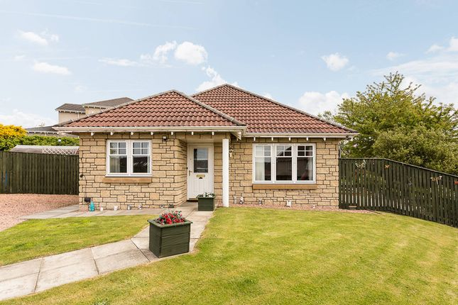 Thumbnail Bungalow for sale in Ballumbie Gardens, Dundee