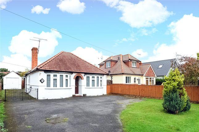 Thumbnail Bungalow to rent in London Road, Wokingham, Berkshire