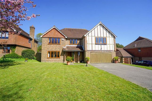 Thumbnail Detached house for sale in Ore Place, Hastings, East Sussex