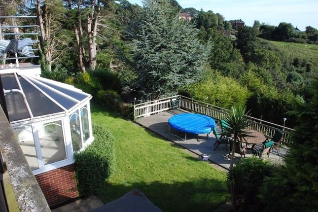 Thumbnail Property to rent in Argyll Road, Exeter