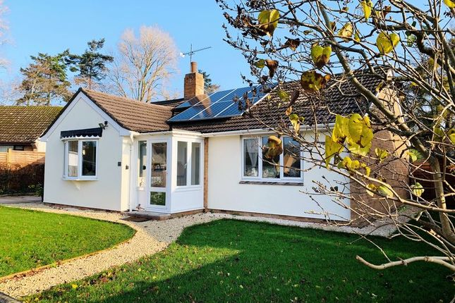Thumbnail Detached bungalow for sale in Glenwood Gardens, Taunton