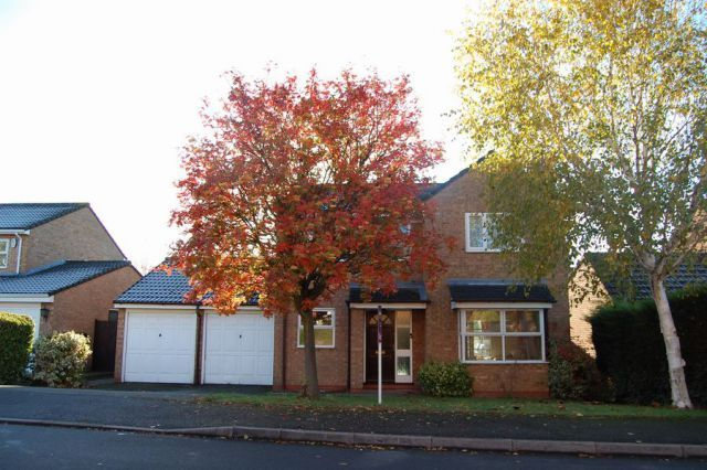 Thumbnail Detached house for sale in Clumber Drive, Edgemont Grange, Northampton