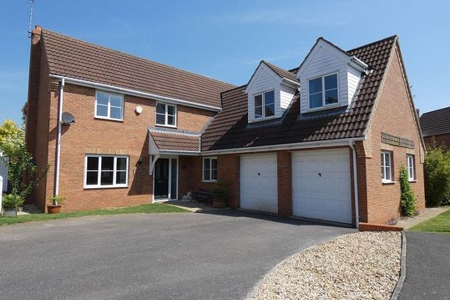Thumbnail Detached house to rent in Lime Close, Ruskington, Lincolnshire