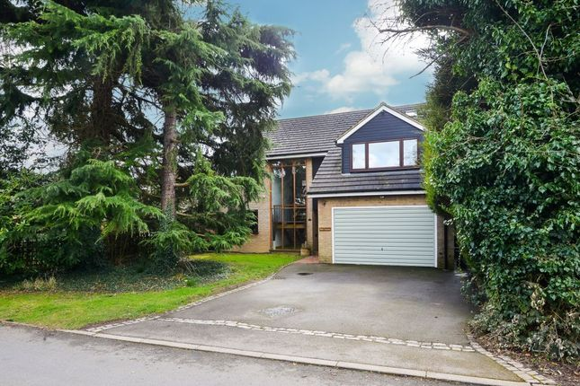 Thumbnail Detached house for sale in Matching Lane, Bishop's Stortford