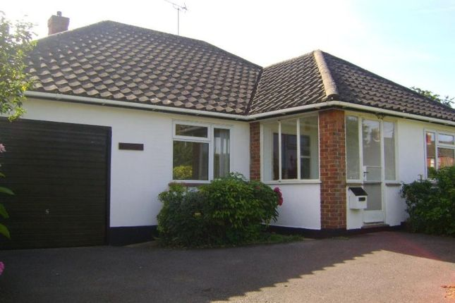 Thumbnail Bungalow to rent in Liphook Road, Lindford
