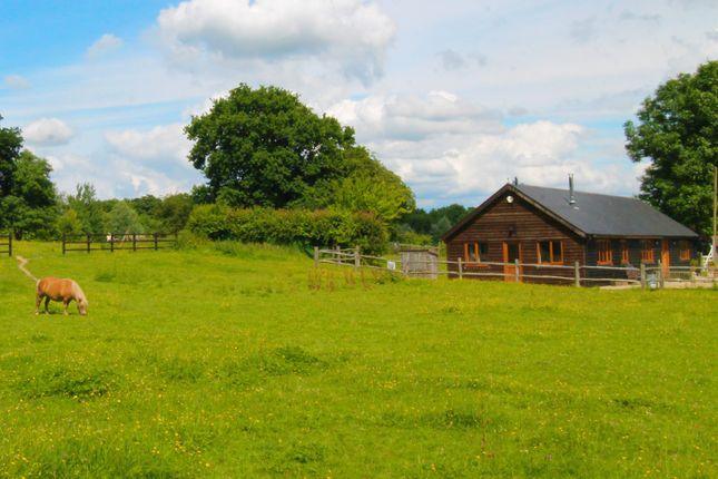 Thumbnail Detached bungalow for sale in Goudhurst Road, Cranbrook