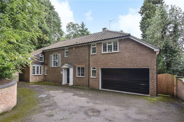 Thumbnail Detached house for sale in London Road, Camberley, Surrey