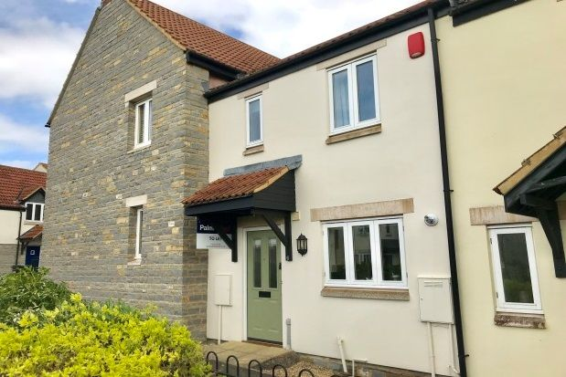 Thumbnail Property to rent in Searle Court, Somerton