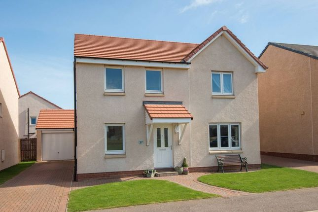 Thumbnail Detached house for sale in Meikle Park Road, Dunbar