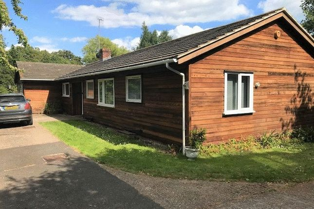 Thumbnail Detached bungalow to rent in Rye Hill, Rye