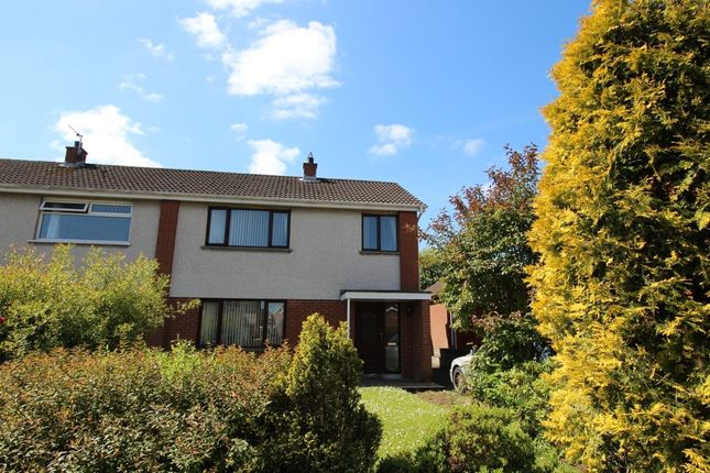 Thumbnail Semi-detached house to rent in Palmer Avenue, Lisburn