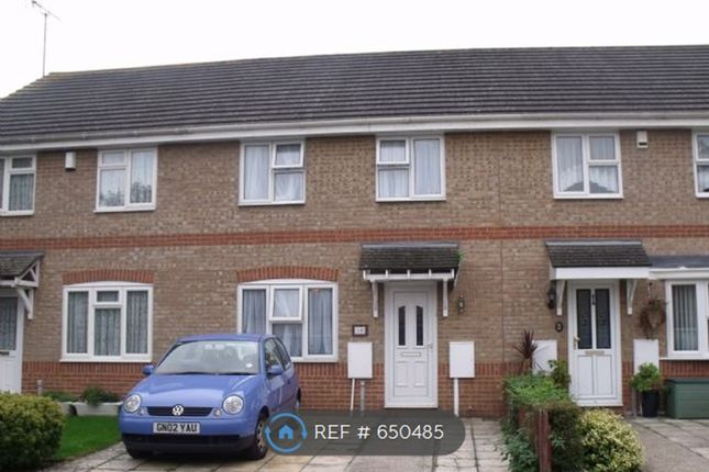 Thumbnail Terraced house to rent in Stoney Bank, Gillingham