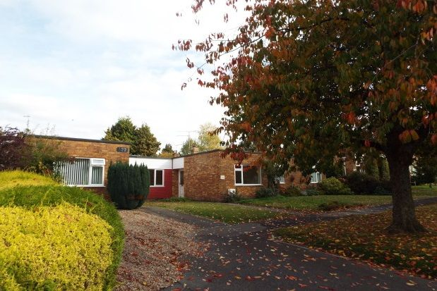 Thumbnail Bungalow to rent in Buriton Road, Winchester