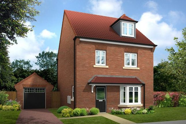 """Thumbnail Detached house for sale in """"The Lumsdale"""" at Kirby Hill, Boroughbridge, York"""